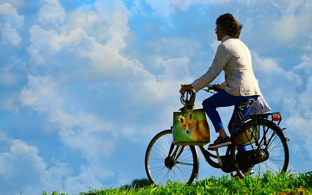 Ebike, Escooter, and Emoped Information for Weight, Health, or Safety Concerns